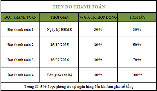 tien do thanh toan chung cu me tri plaza